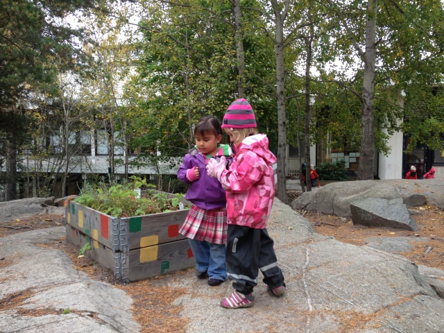 Taken last year at Vittra: Maggie with her good friend Kendall playing next to the outdoor play garden